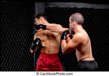-, combattimento, artisti marziali, mescolato, dando pugno