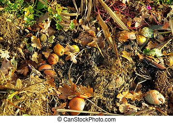 -, compost, tas, komposthaufen, 14
