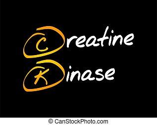 -, conceito, kinase, médico, ck, creatine, acrônimo