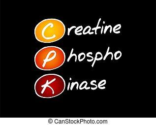 -, cpk, phosphokinase, acrônimo, creatine