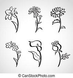 -, croquis, style, encre, ensemble, été, fleurs
