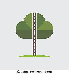 -, drewno, schody