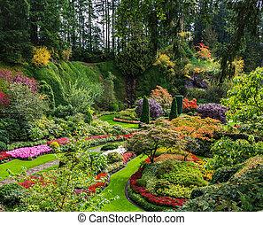 -, ensemble, butchart, jardins