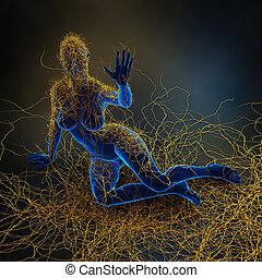 -, esclerose, immunity, múltiplo