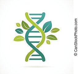 -, feuilles, arbre, génétique, vert, adn, icône