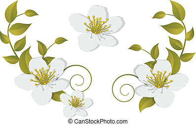 -, fleurir, éléments, conception, branche