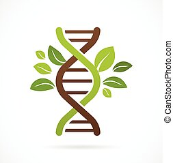 -, folhas, árvore, genético, verde, adn, ícone