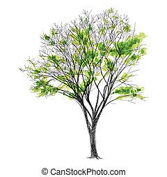 -, folhas, árvore, mão, grande, sem, nu, desenhado