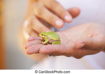 -, gr?rosch, rã, verde, grã¼ner, froschgreen