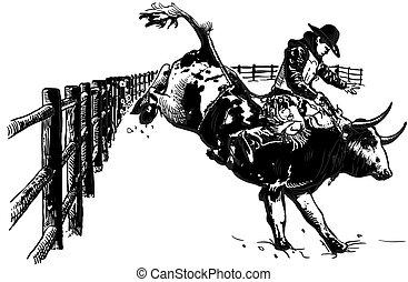-, hand, rodeo, vector, getrokken, freehand