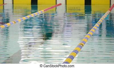 -, hd, piscine, natation