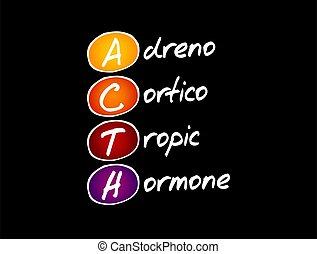 -, hormon, akronim, adrenocorticotropic, acth