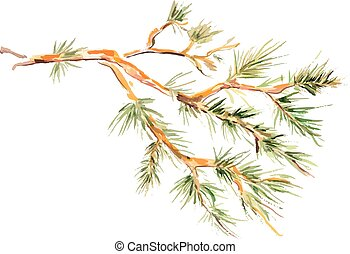 -, ilustração, aquarela, vetorial, pinho, branch., quadro