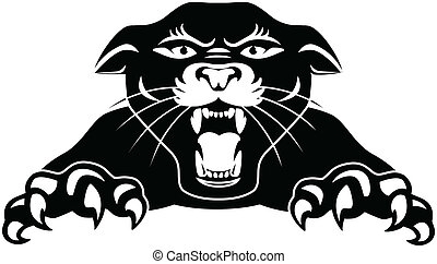panther illustrations and clip art 5 272 panther royalty free rh canstockphoto com clipart panthers football clipart panther paw