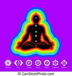 -, immagine, silhouette, vettore, aura, chakras, colori, nero, 7, fondo, viola, icone, yoga, loto, uomo, posizione, fiore