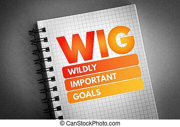 -, importante, peluca, desenfrenadamente, siglas, metas