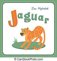 -, j, jaguar, brev