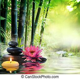 -, lírio, natureza, pedras, massagem