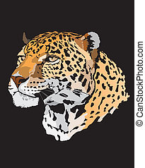 -, leopard, abbildung, bestand
