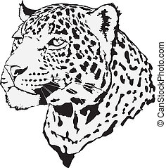 -, leopard, illustration, aktie