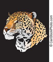 -, leopardo, ilustração, estoque