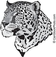 -, leopardo, ilustración, acción