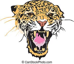 -, luipaard, illustratie, liggen