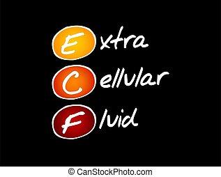 -, médico, fluido, acrônimo, conceito, ecf, extracellular