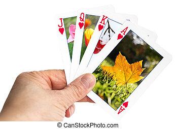 -, main, automne, tenue, jeu carte