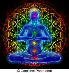 -, meditación, yoga, vida, flor