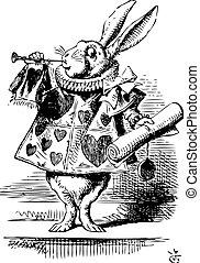 -, mundo maravilloso, original, alice's, soplar, vendimia, conejo, blanco, heraldo, grabado, aventuras, trompeta, vestido