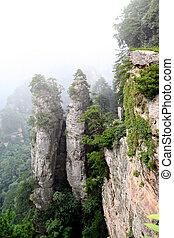 -, nemzeti park, zhangjiajie, kína, erdő