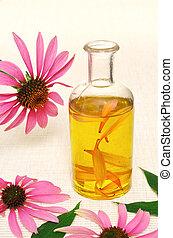 -, olie, fles, coneflower, stillife, essentieel