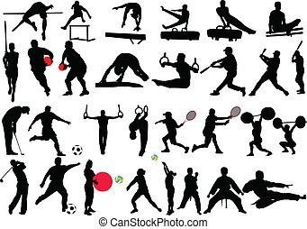 -, olik, vektor, sport, kollektion