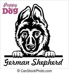 -, pastor, perros, echar una ojeada, alemán, perrito, ...