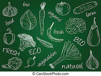 -, planche, école, légumes, doodles