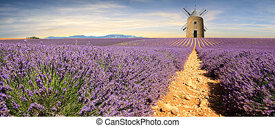 -, provence, france