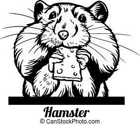 -, rosto, branca, peeking, mordidelas, engraçado, hamster, cabeça, biscoito, isolado, saída