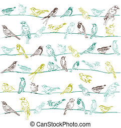 -, seamless, vector, ontwerp, achtergrond, plakboek, vogels