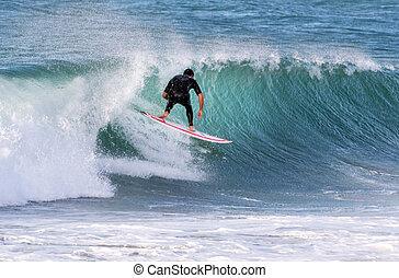 -, surfing, sport, morze, machać