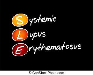 -, systemic, sle, erythematosus, acrônimo, lúpus