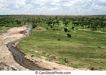 -, tarangire, tanzania, afryka, rzeka