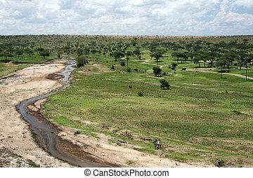 -, tarangire, tanzanie, afrique, rivière