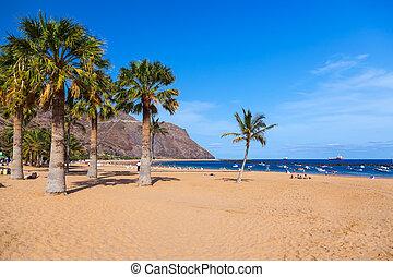 -, tenerife, îles canaries, plage, teresitas