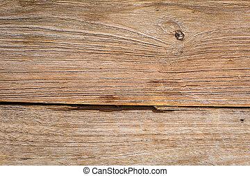 -, texture, grain bois, fond, closeup