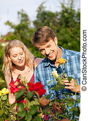 -, travail, jardinage, jardin, roses