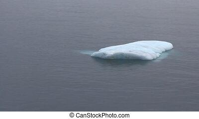 -, typique, iceberg, bas, growler