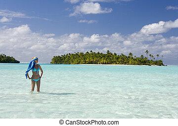 -, vacaciones, pacífico, tropical, fiji, sur