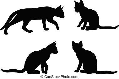 -, vecteur, ensemble, chat, silhouettes