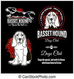 -, vecteur, gabarit, logo, insignes, ensemble, t-shirt, chien de chasse, basset